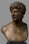 Cast – Antinoo Grimani